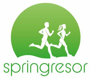 Springresor - ny WordPress- sida